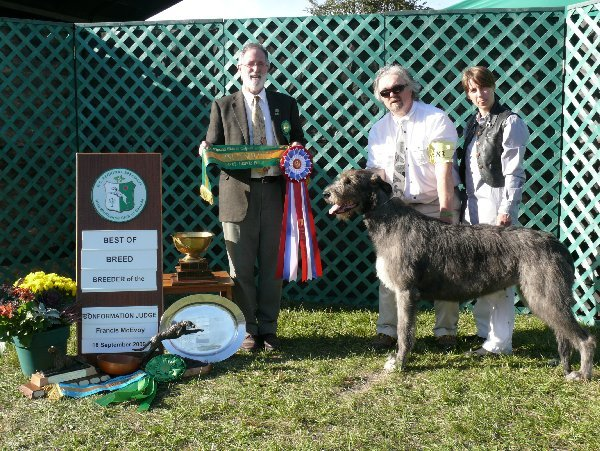 Best of Breed - CH Rockhart Heresy