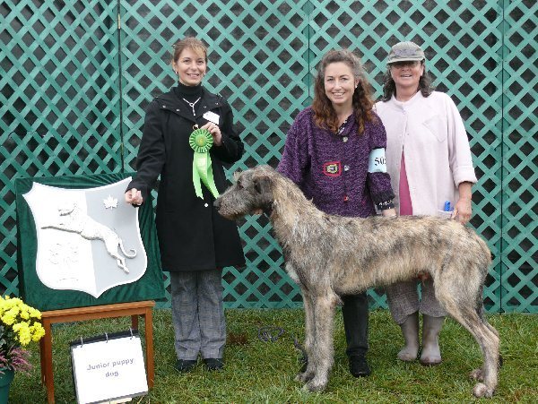 Sweeps Jr Puppy Dog - Cnoccarne Tinnakillagh