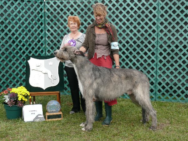 Winners Dog - Caraglen Berwyck True Lies