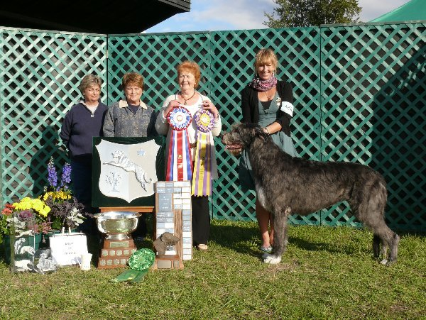 Best of Breed, Best of Winners - Druid Rock Shellanes Skylark