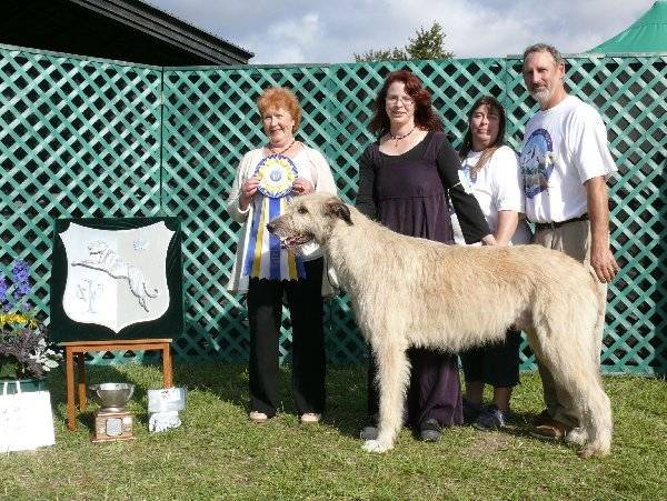 Altered Best of Breed - Altered Winners Dog - Cnoccarne Cunacarraigagh