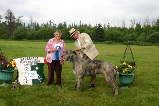13-canadian bred male first