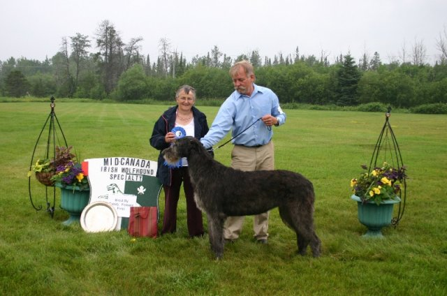 23-bred by exhibitor female first
